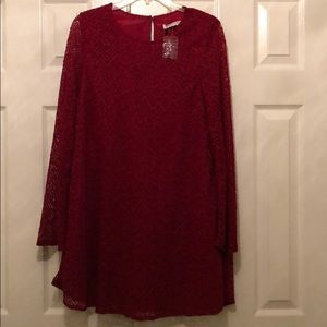 Love Riche lace shift dress with long sleeves